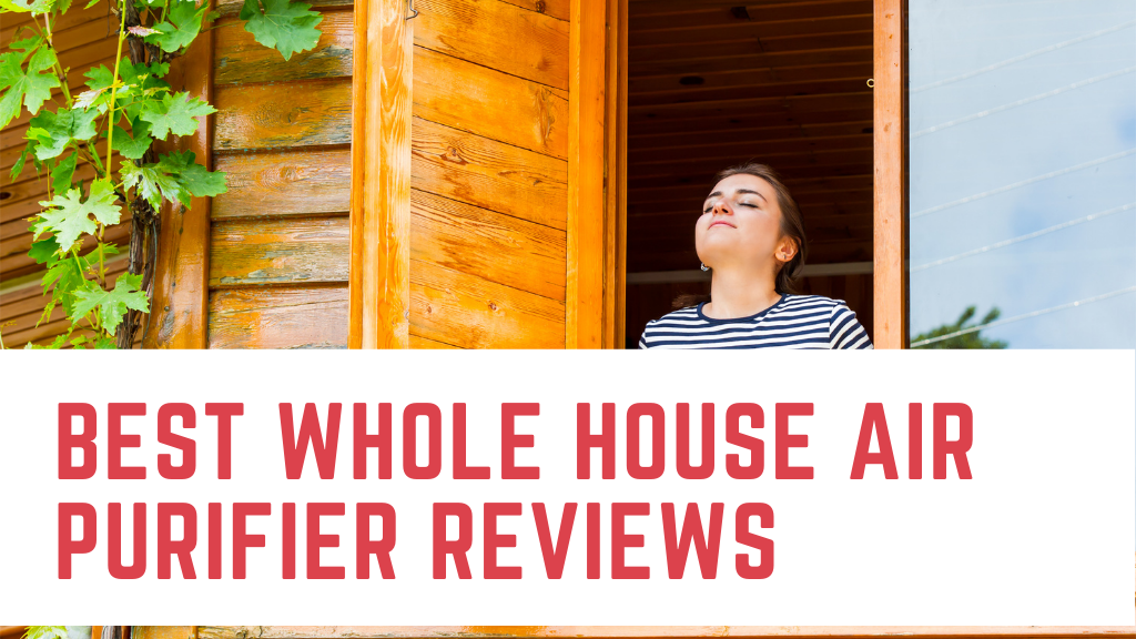 best whole house air purifier reviews, header